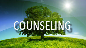 Counseling small